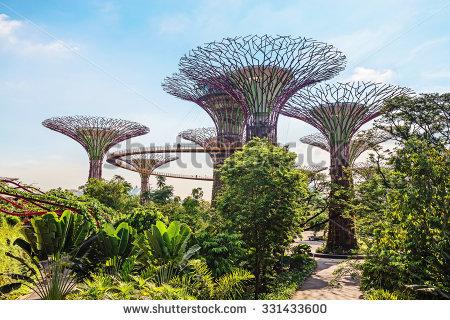 Gardens By Bay Singapore Stock Photo 125810687.