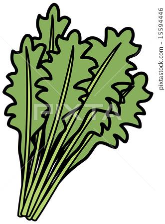garland chrysanthemum, vectors, vector.