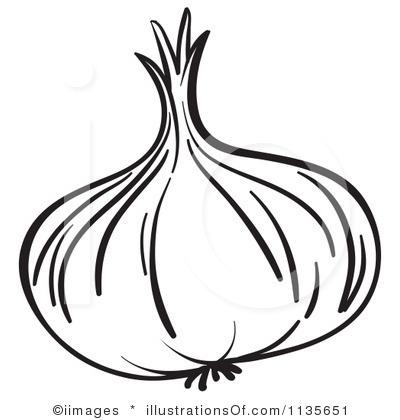 Garlic Clipart.