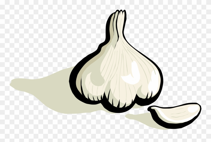 Garlic Bread Clove Garlic Breath Vegetable.