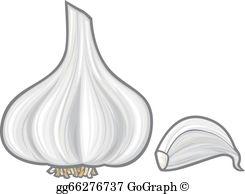 Garlic Cloves Clip Art.