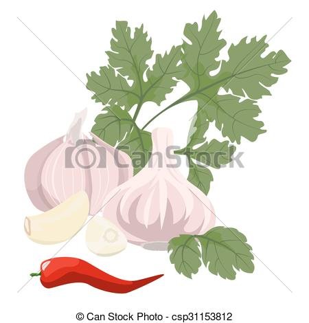 Vector Clip Art of garlic, parsley and hot red pepper.