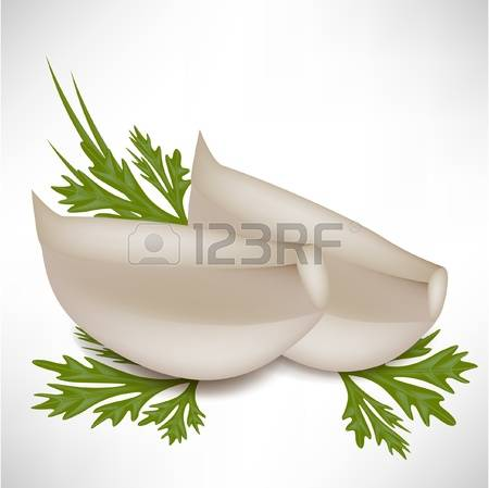 4,535 Garlic Isolated Cliparts, Stock Vector And Royalty Free.
