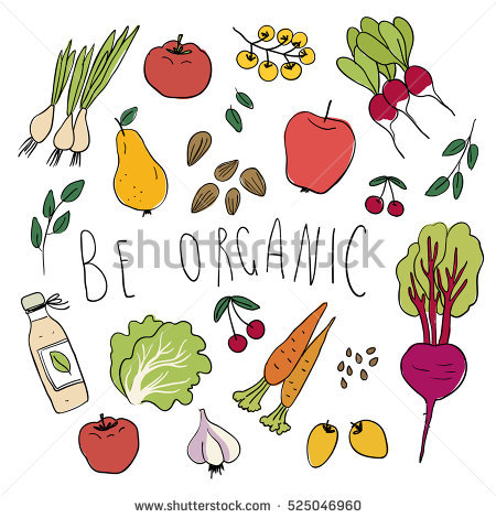 Lettuce Veggie Stock Vectors, Images & Vector Art.