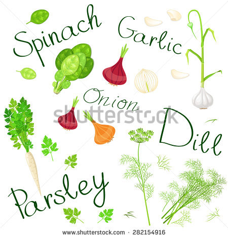 Italy Flag Food Vegetables Herbs Cheese Stock Vector 322165544.