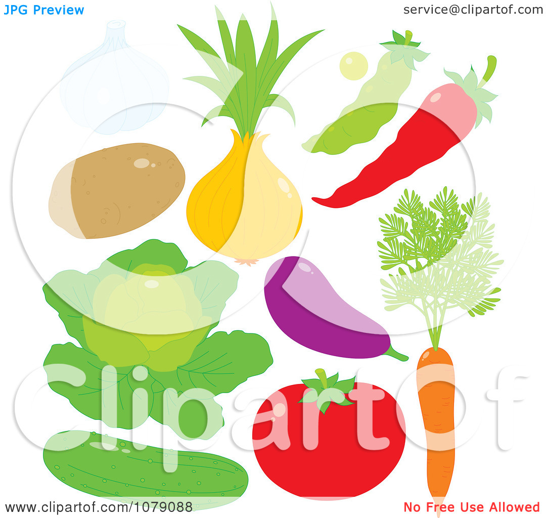 Clipart Garlic Potato Onion Pea Chili Pepper Lettuce Eggplant.