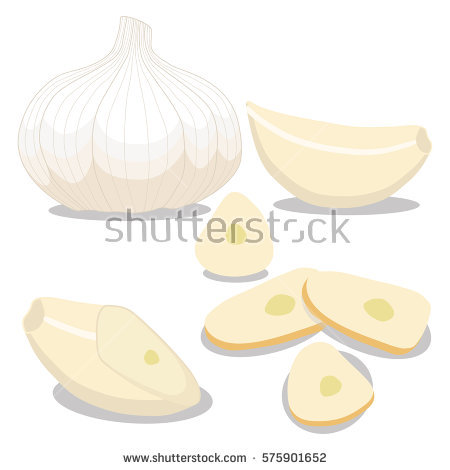 Garlic Stock Vectors, Images & Vector Art.