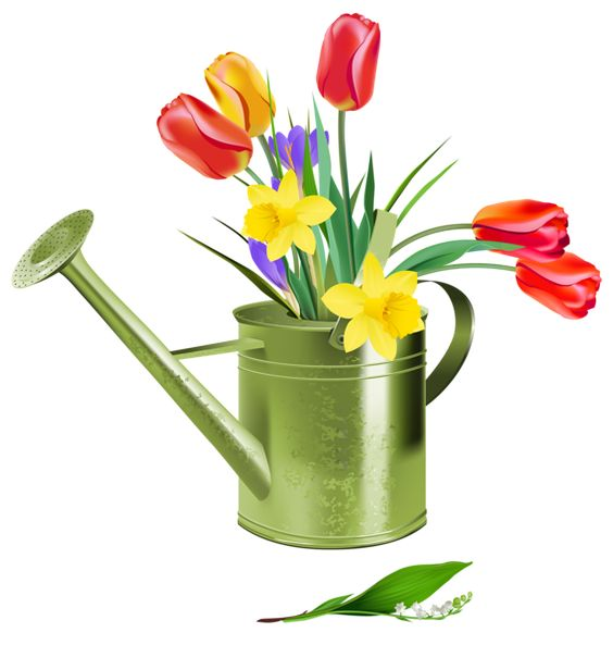 Green Watering Can with Spring Flowers PNG Clipart.