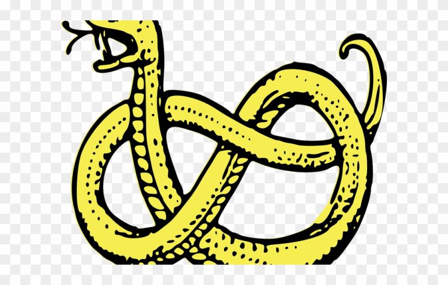 Garter Snake Clipart Transparent Background.