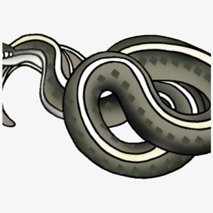 Family Snake Images Cartoon , Transparent Cartoon, Free.