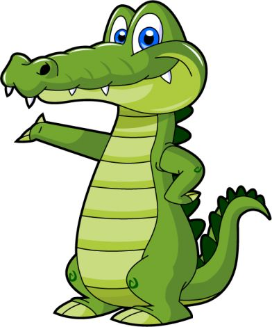 1000+ images about gator on Pinterest.