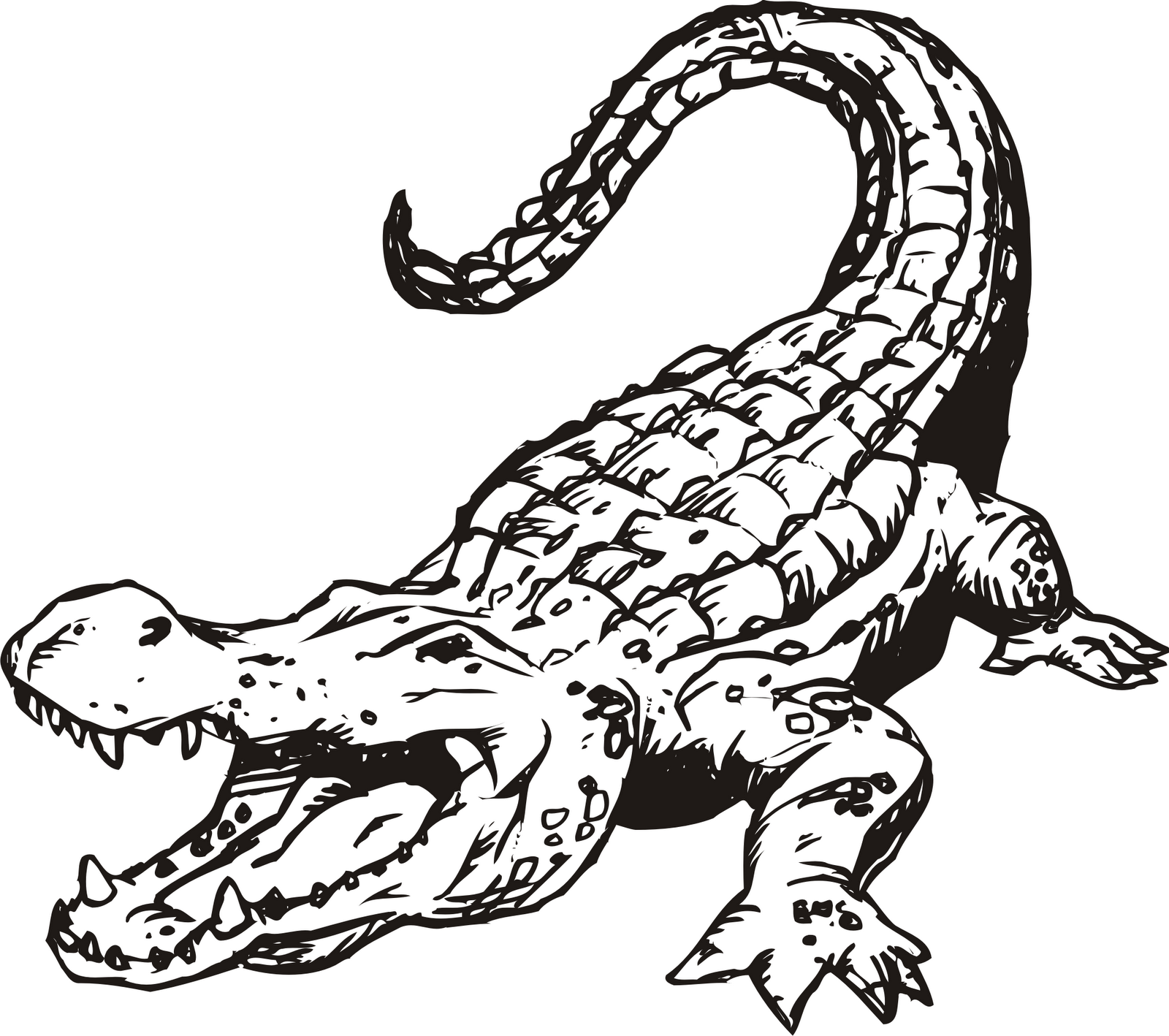Free Gator Clipart Black And White, Download Free Clip Art.