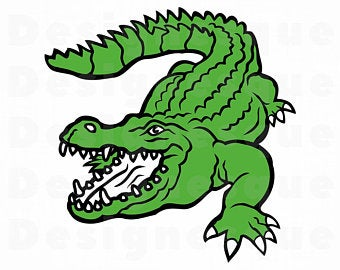 Gator clipart, Gator Transparent FREE for download on.