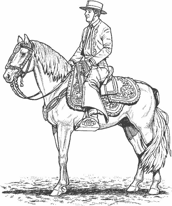 Gaucho dress clipart.