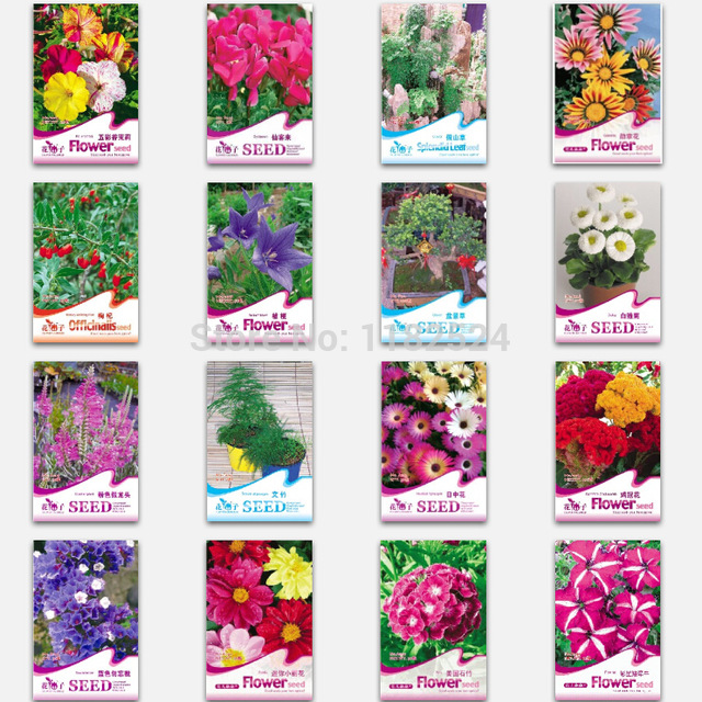 Aliexpress.com : Buy 2016 Rushed Limited Sementes $0.99/pack.