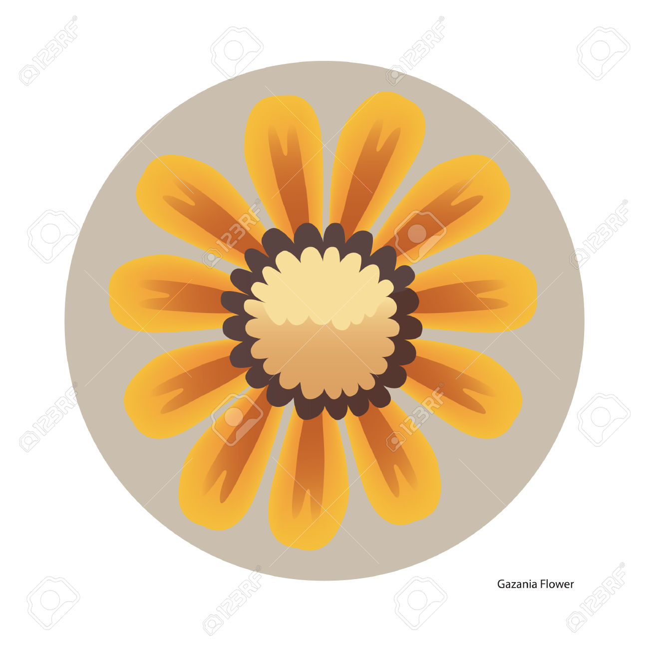 Gazania Flower Royalty Free Cliparts, Vectors, And Stock.