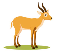 Gazelle Clipart & Look At Gazelle HQ Clip Art Images.