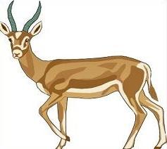 Free Gazelle Clipart.