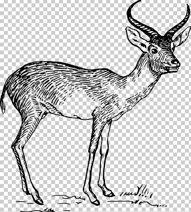 Antelope Pronghorn Gazelle PNG, Clipart, Animal Figure.