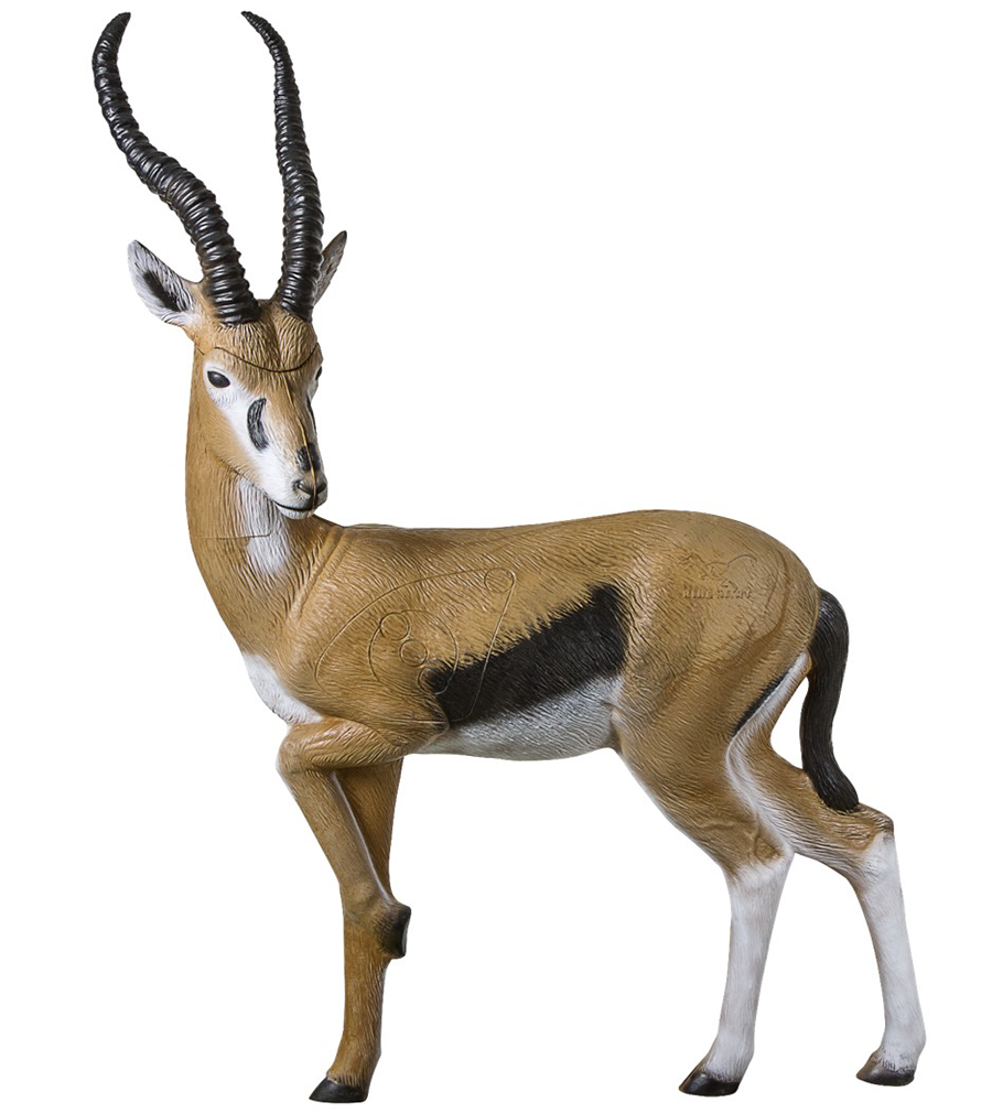 Springbok PNG Images.