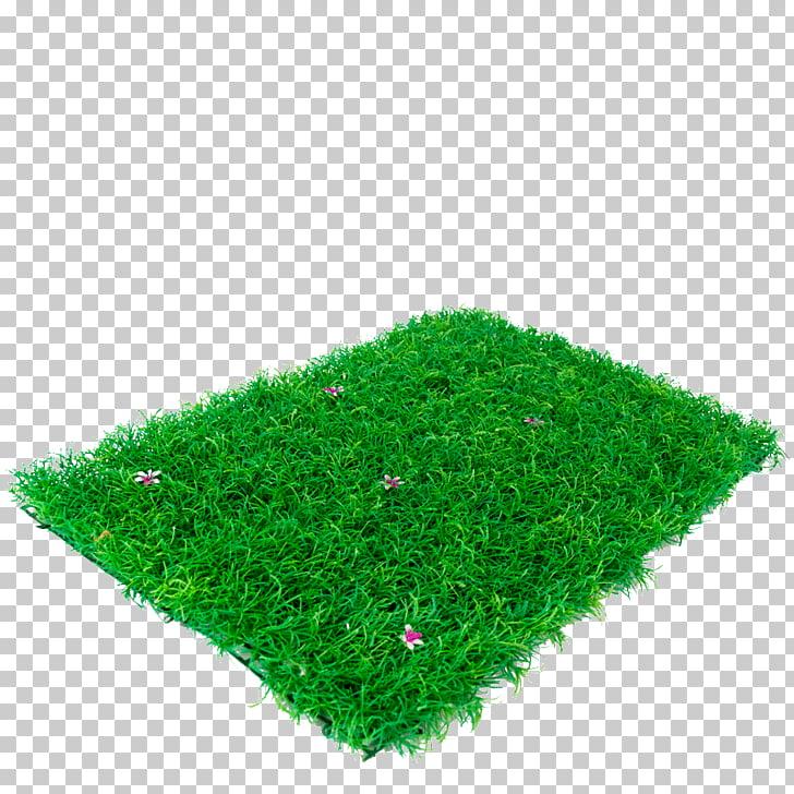 Lawn, gazon PNG clipart.