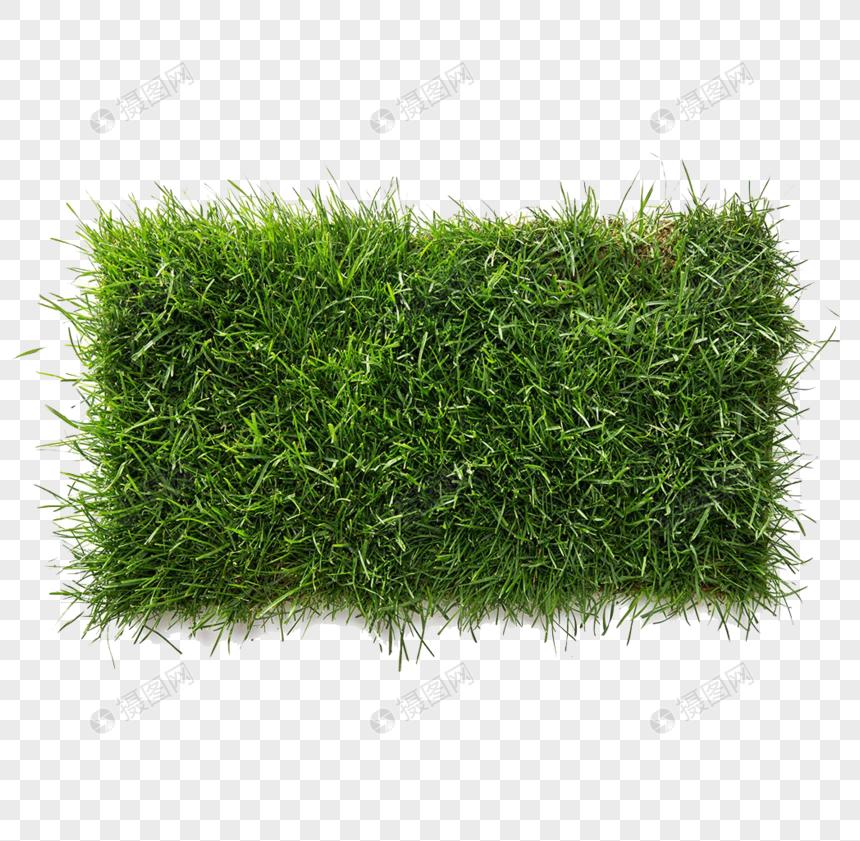 Photo de gazon vert_Numéro de l'image400447225_Format d'image png_fr.