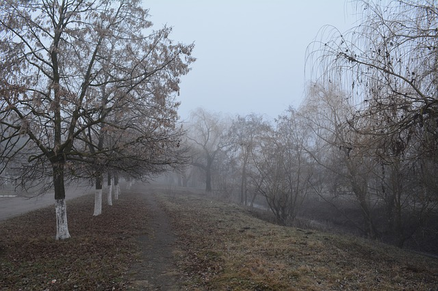 Free pictures MOLDOVA.