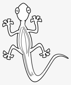 Gecko PNG, Transparent Gecko PNG Image Free Download.