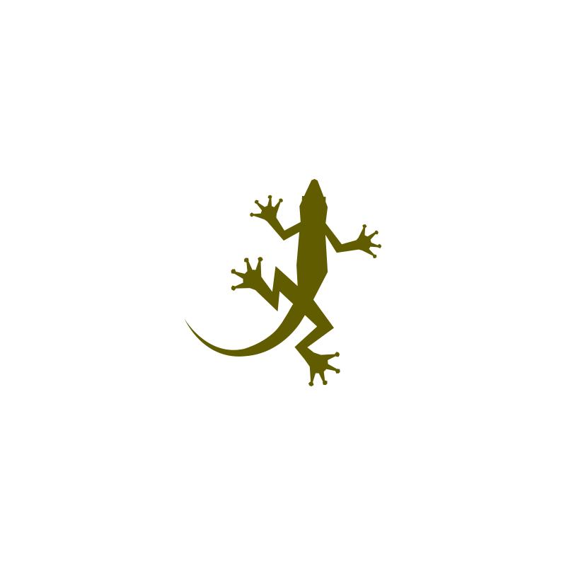 Gecko Logo — Creative Rooster.