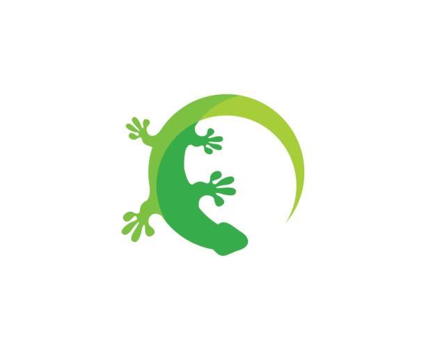 Best Gecko Illustrations, Royalty.
