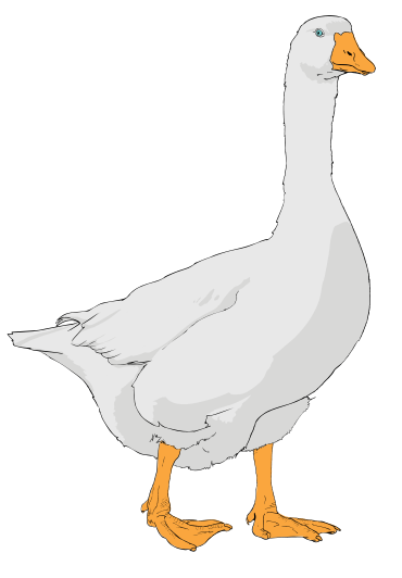 Geese Clipart.