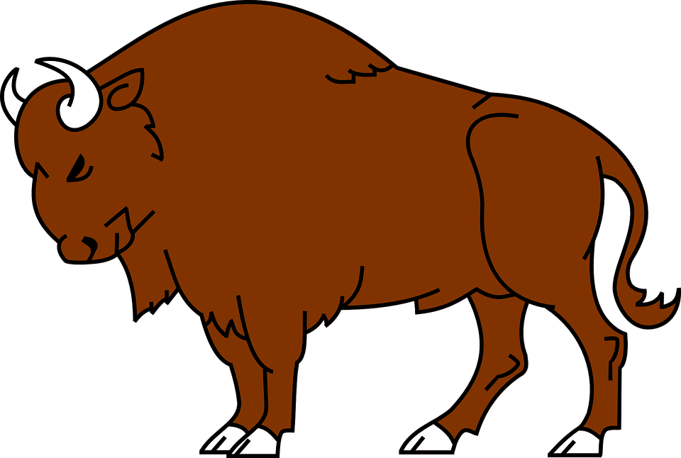 Free vector graphic: Bison, Animal, Wild, Buffalo.