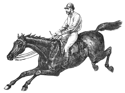 Free Gelding Clipart, 1 page of free to use images.