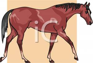 A_Cartoon_Bay_Gelding_Royalty_Free_Clipart_Picture_100304.