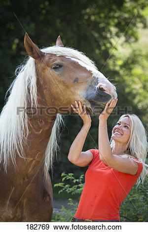 Stock Photograph of Noriker Horse. Smiling woman next to chestnut.