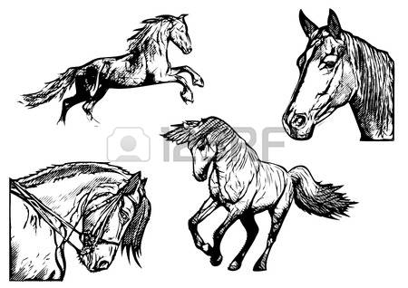 434 Gelding Stock Vector Illustration And Royalty Free Gelding Clipart.