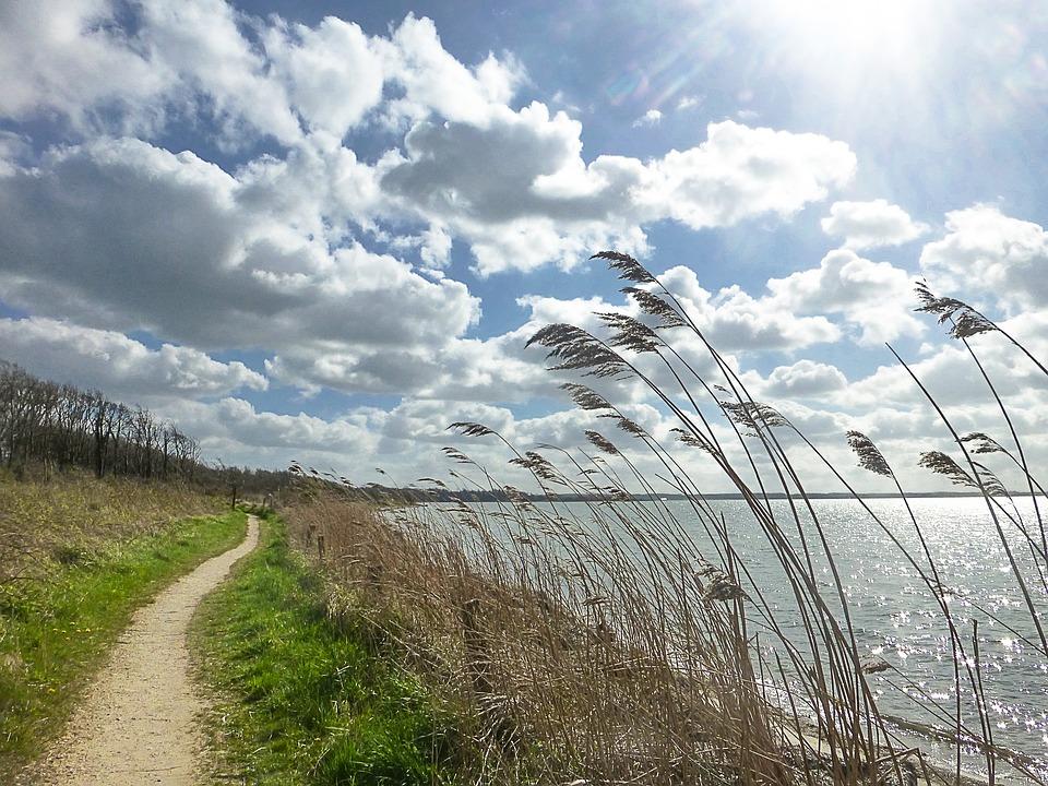 Free photo: Nature Reserve, Geltinger Bakshi.
