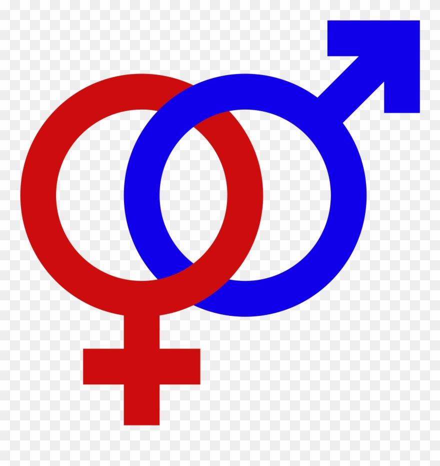 Male Female Gender Signs Gender Symbol Set Male Female.
