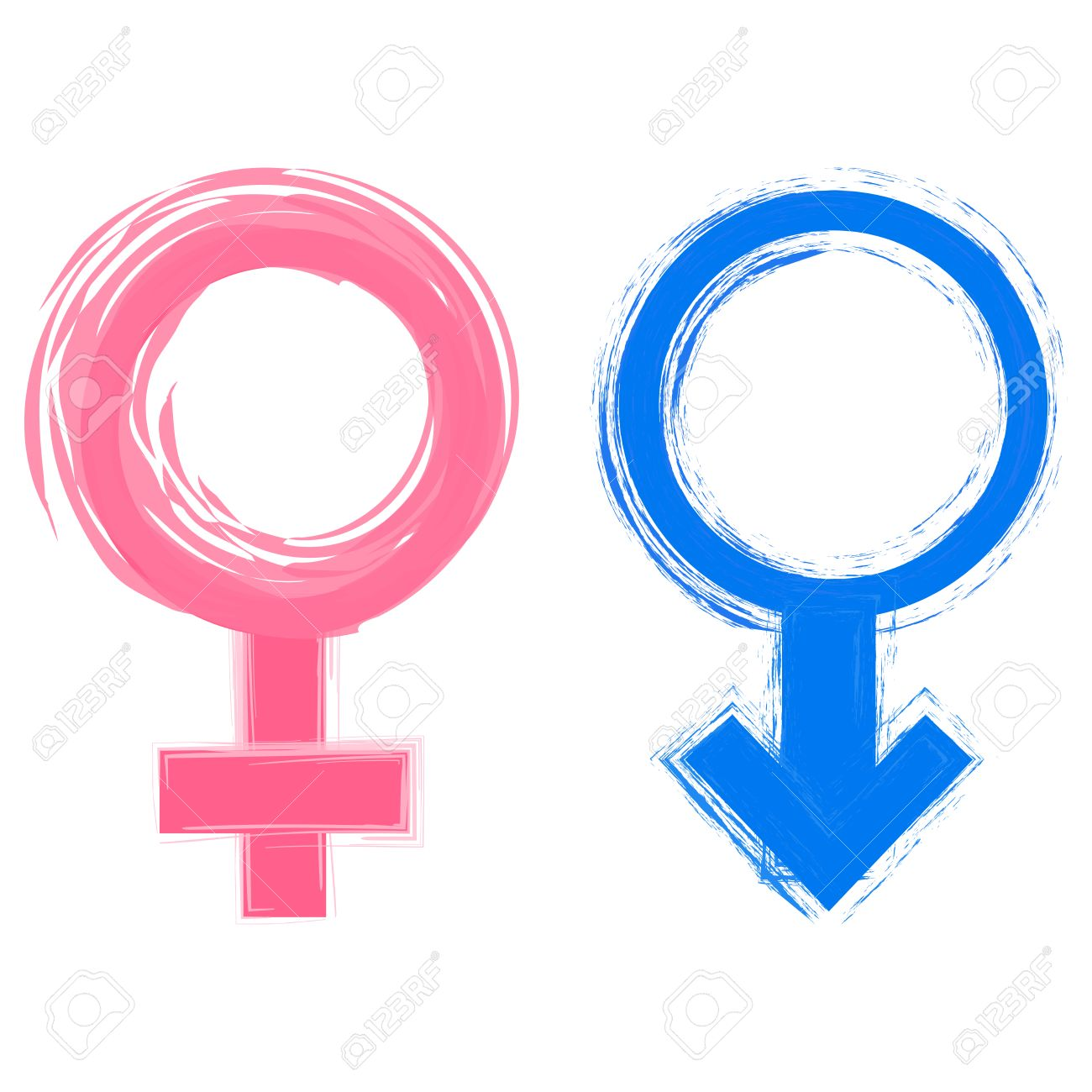 Vector illustration of male and female gender symbols.