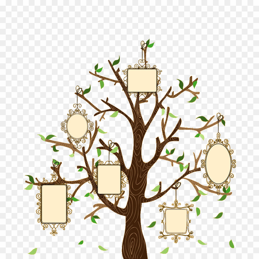 Family Trees Vectors PNG Family Tree Genealogy Clipart download.