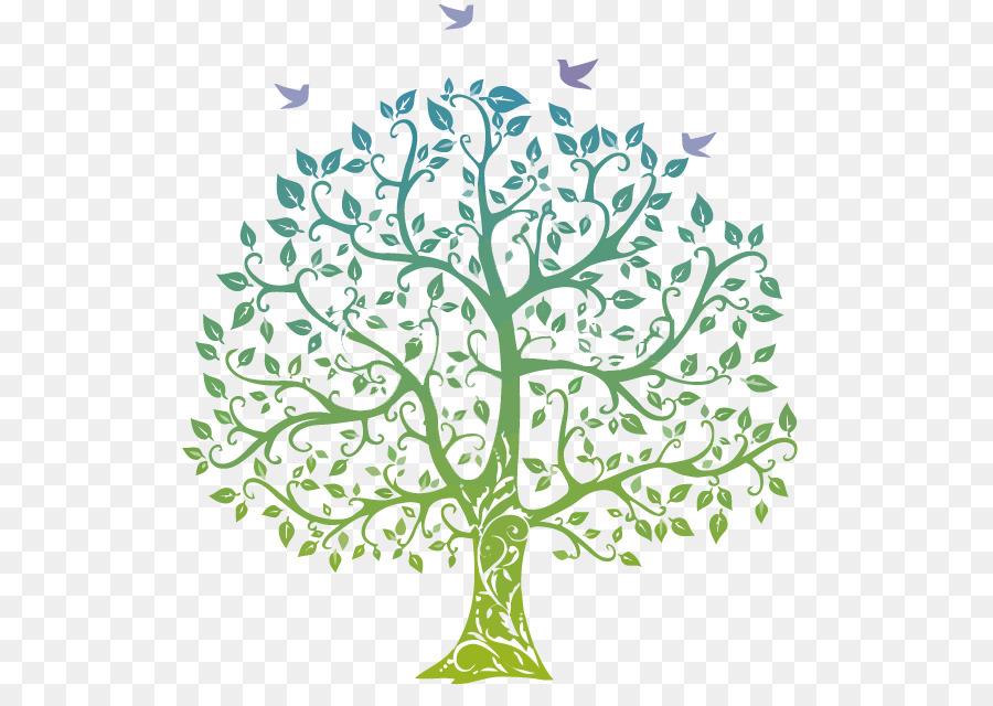 Family tree Genealogy Clip art.