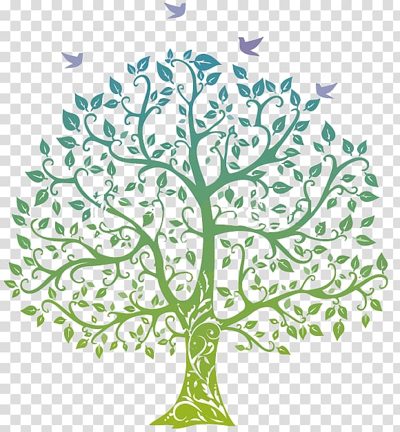 Family tree Genealogy , Family transparent background PNG.