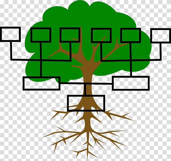 Family tree Genealogy Ancestor , Family Line transparent.