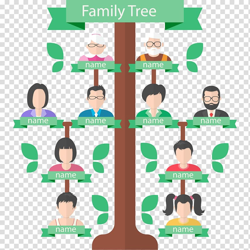 Illustration of three generation family tree, Family tree.