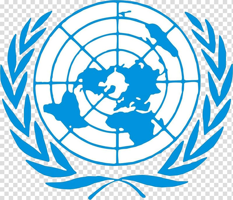 Flag of the United Nations United Nations Security Council.