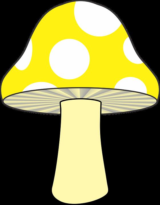 Yellow, Mushroom.