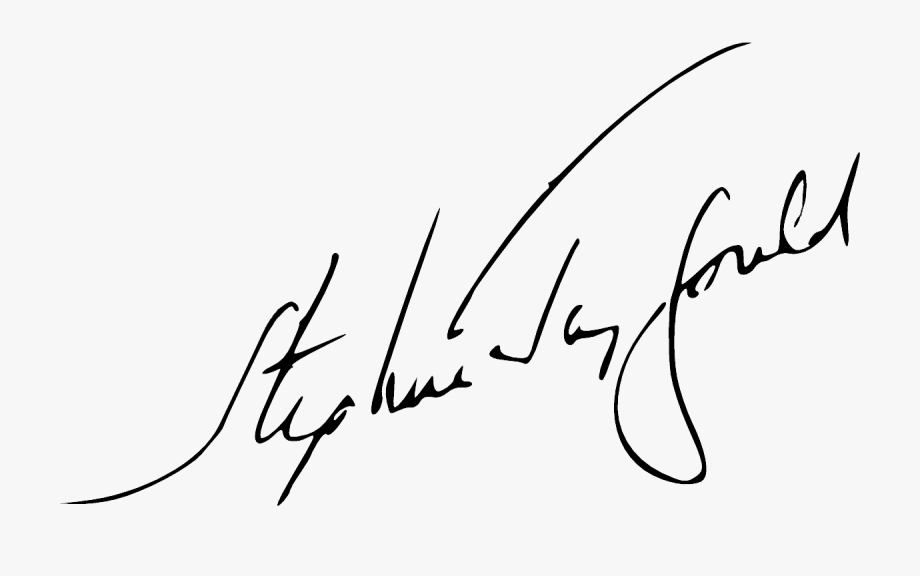 Sjg Signature.