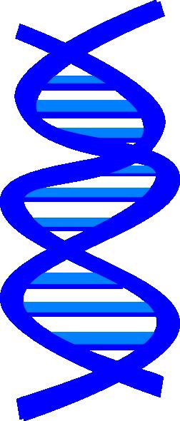 Genes Clipart.