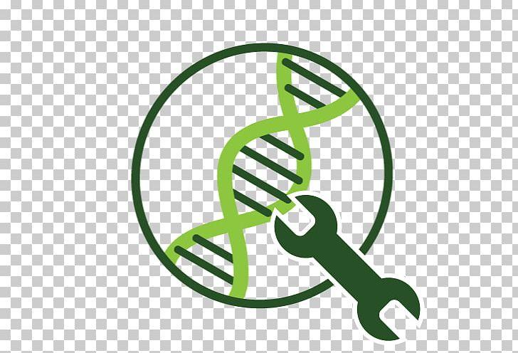 Algae Fuel Genetic Engineering Information PNG, Clipart, Algae.