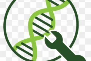 Genetic engineering clipart 1 » Clipart Portal.